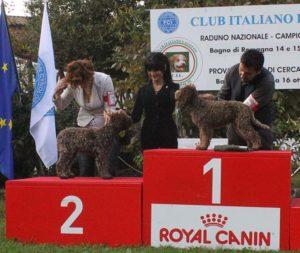 podio-miglior-cucciolo1